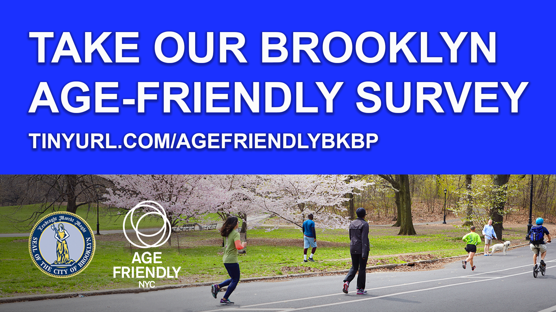 Age-friendly NYC Survey banner
