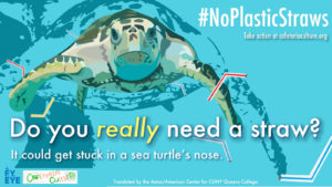 NoPlasticStraws_1600x900_English_2 image