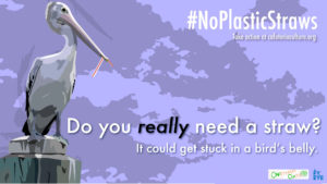 NoPlasticStraws_1920x1080_English image