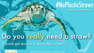 NoPlasticStraws_1920x1080_English_2 image