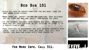 Bed Bug Infestation Awareness image