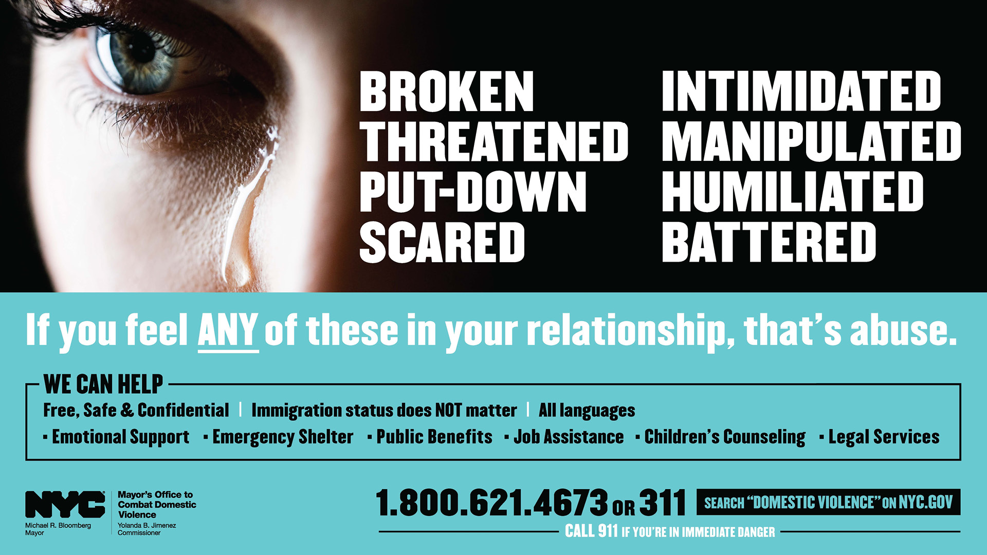 Domestic Violence Support banner
