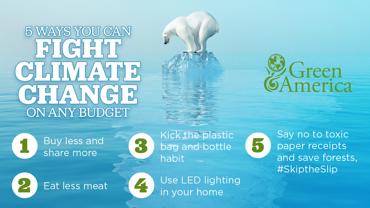 5 Ways to Fight Climate Change banner