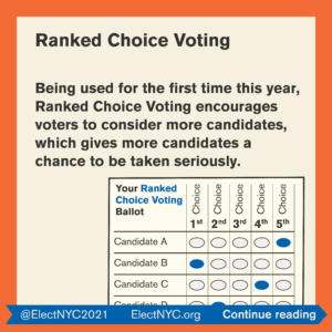 ElectNYC_Why is the election so important_9 image