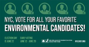 Vote For All Your Favorite Environmental Candidates image
