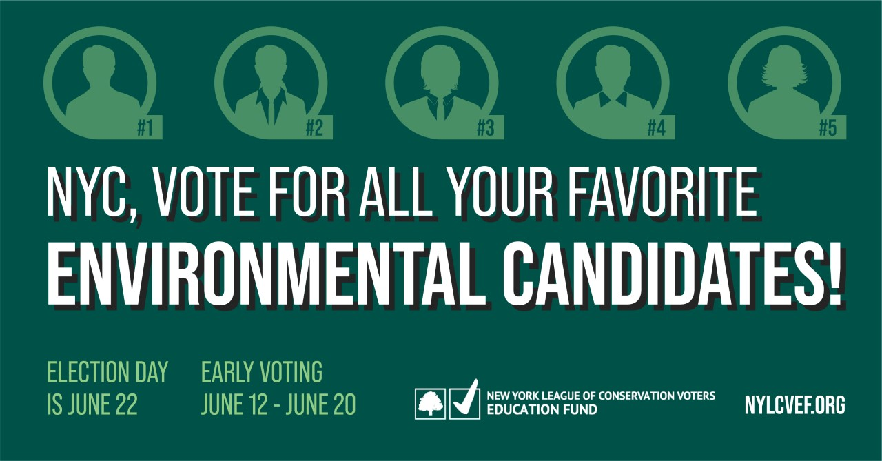 Vote For All Your Favorite Environmental Candidates banner